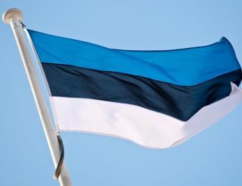 Изображение - Виза в эстонию estonia_flag-347x267